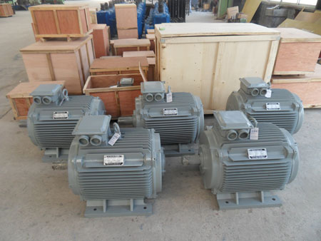 30kw hydropower Permanent magnet generator